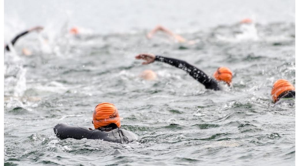 langstreckenschwimmen-event-2016-1